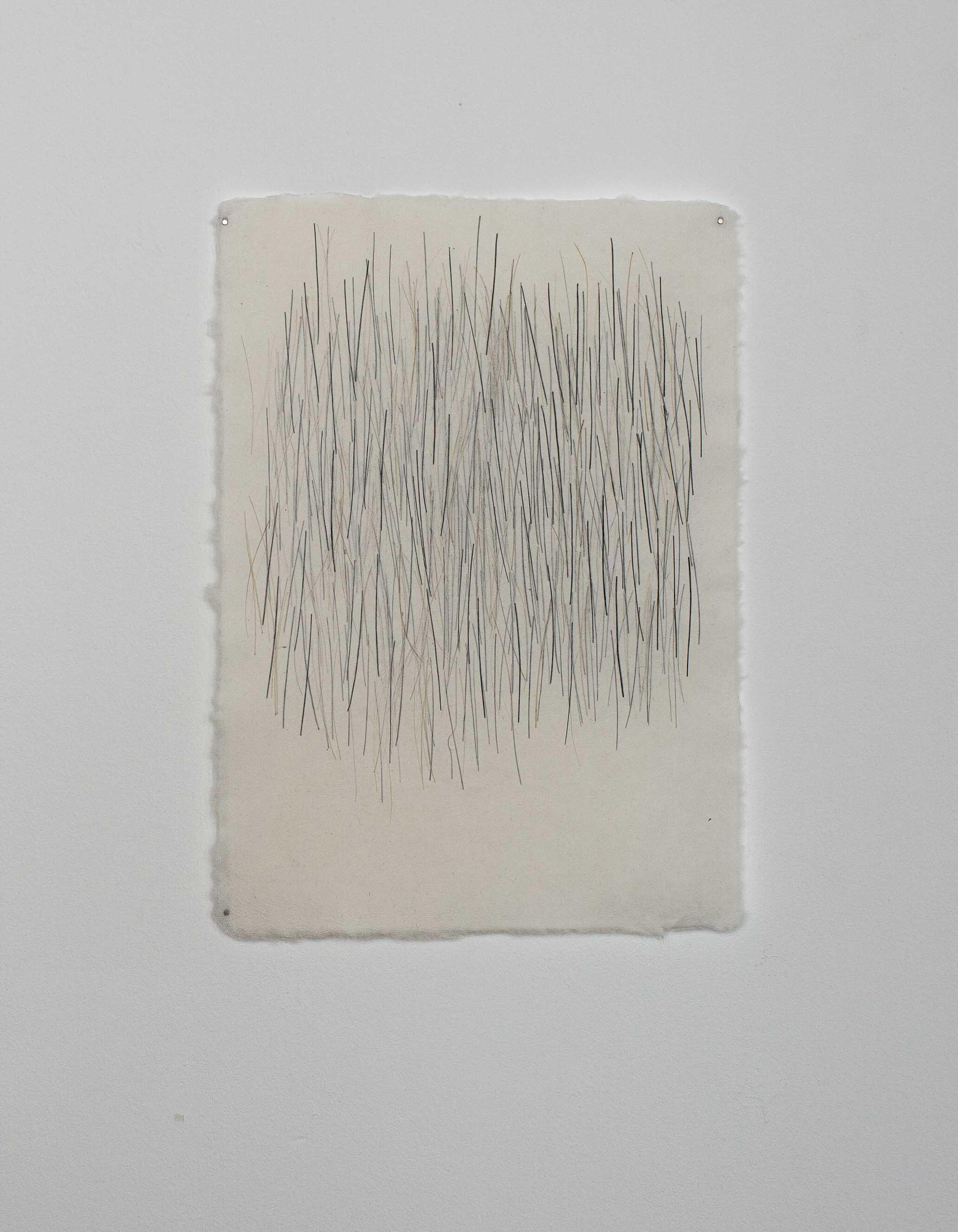 o.T., Schweineborsten in Papier geschöpft, 29x21cm