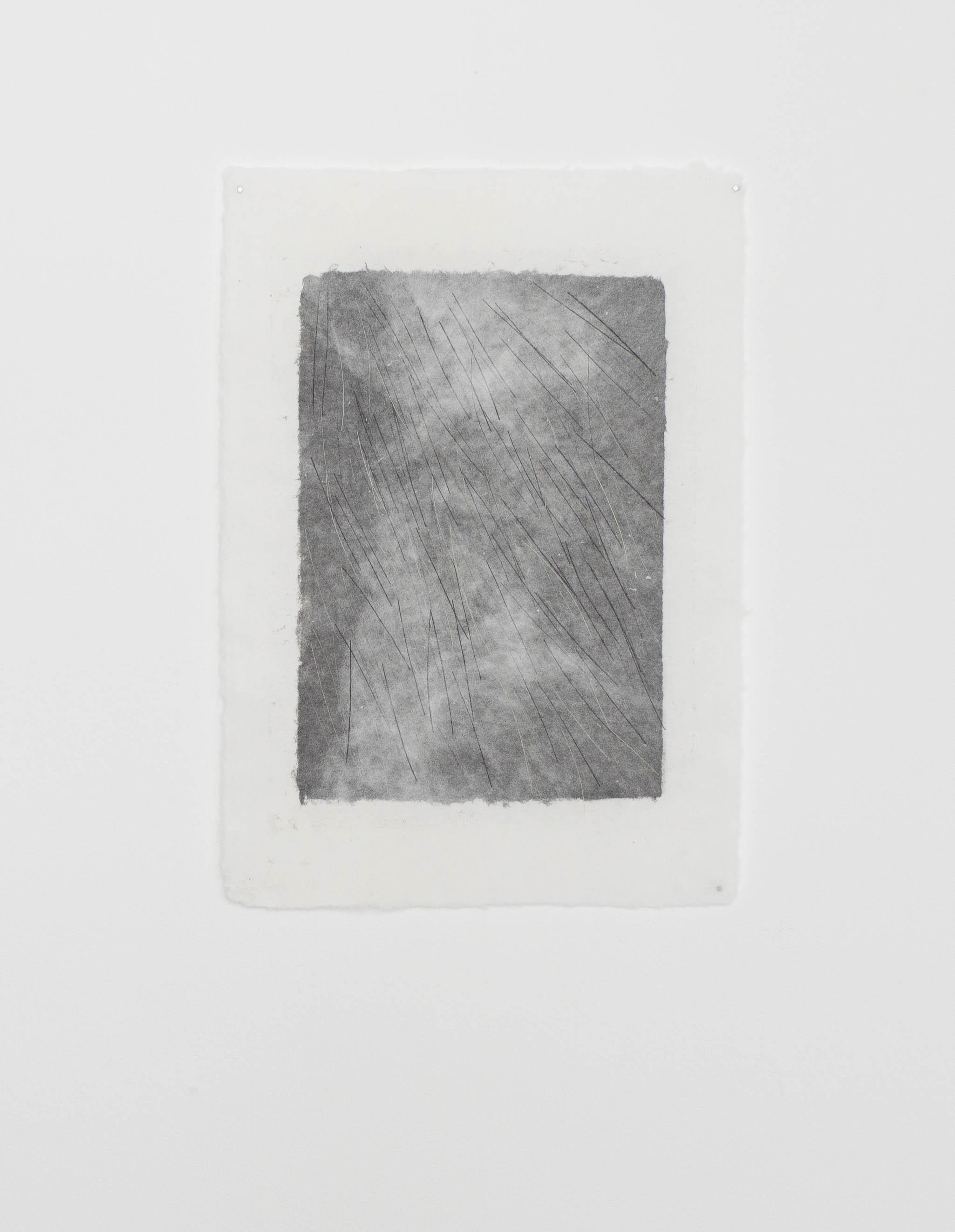 o.T., Pferdehaar in Papier geschöpft, 42x29cm