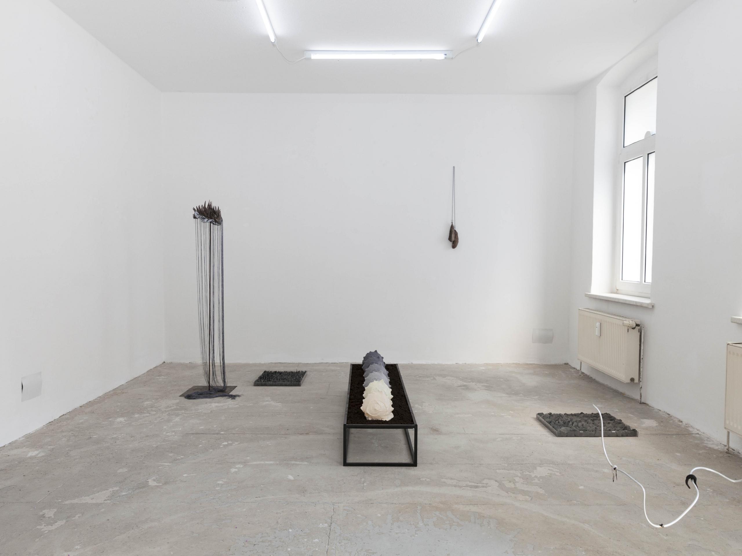 Body of Land, Ausstellungsansicht, Kunstraum VIKA Halle (Saale), 2021